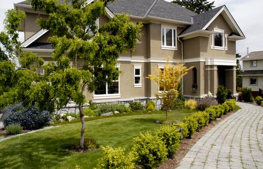 Arvada Tree Service Landscaping Arvada Co Denver Lawn Care
